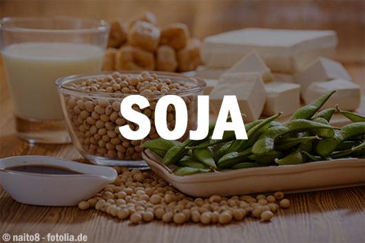 Protein aus Sojaprodukten